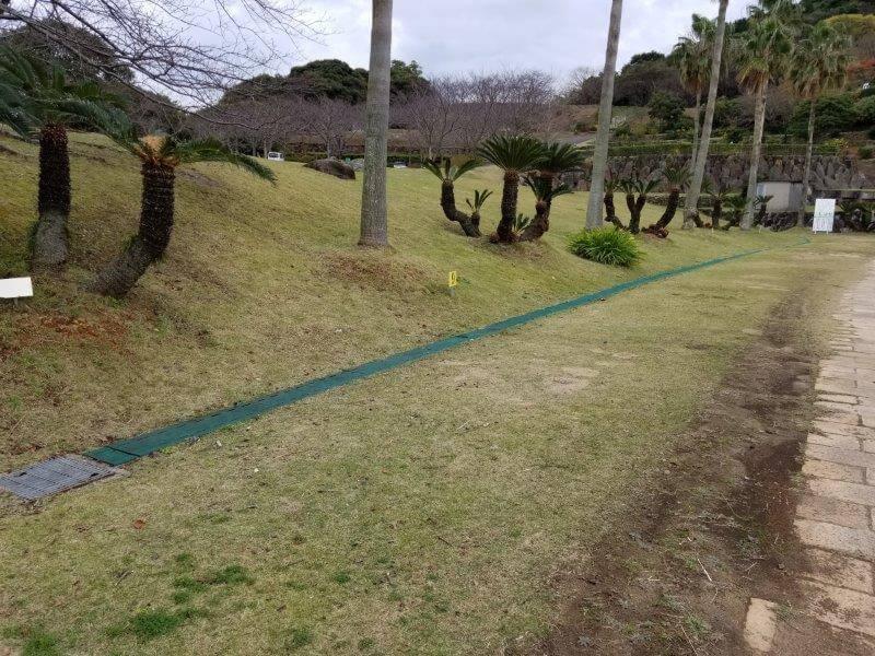 四本堂公園キャンプ場 一般サイト(9番サイト)