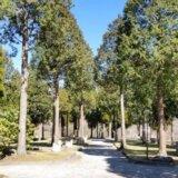 歌瀬キャンプ場(熊本県)-細かすぎるキャンプ場レポ