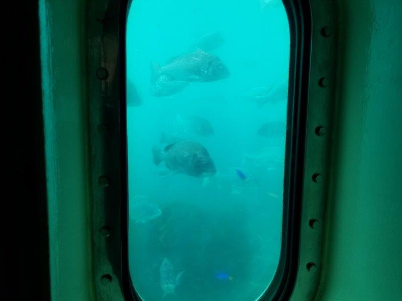 佐賀県 波戸岬の玄海海中展望塔
