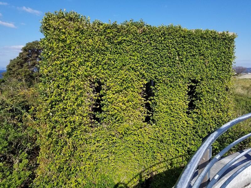 北緯33度線展望台の横にある旧日本海軍の施設跡