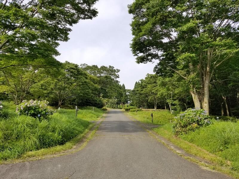スノーピーク奥日田(区画電源オートBサイト)