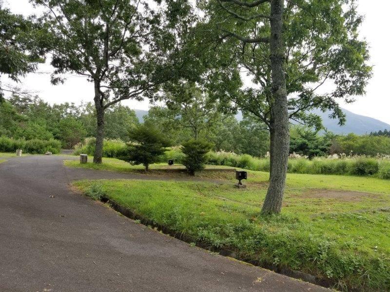 九重グリーンパーク泉水キャンプ村 オートキャンプサイト(電源サイト)