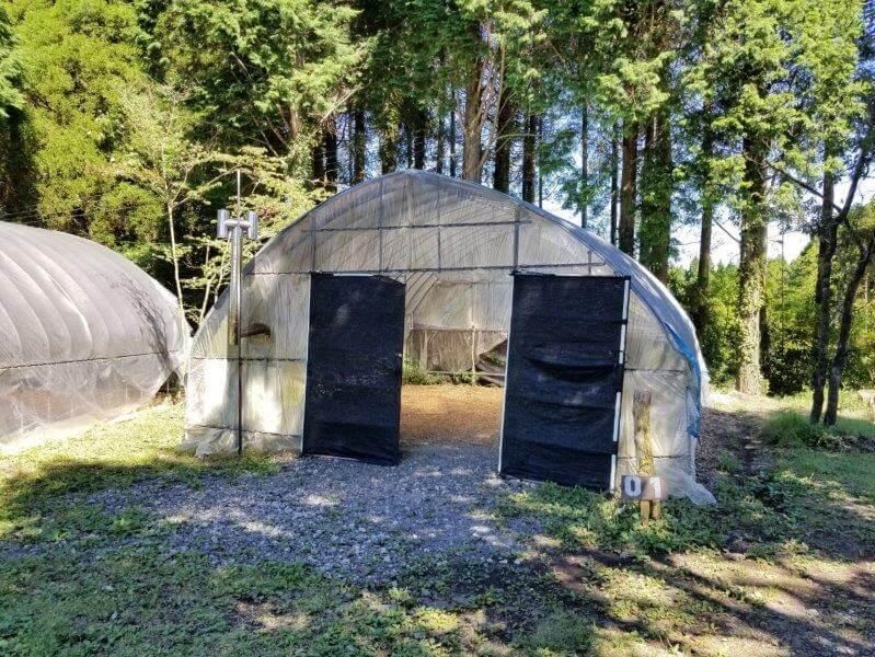吉原ごんべえ村キャンプ場 全天候型ドームサイト1番サイト