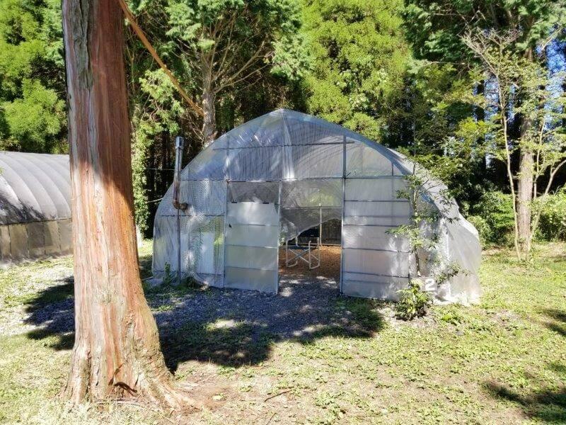 吉原ごんべえ村キャンプ場 全天候型ドームサイト2番サイト