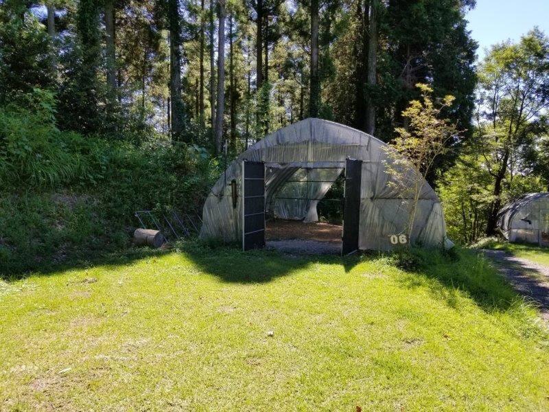 吉原ごんべえ村キャンプ場 全天候型ドームサイト6番サイト