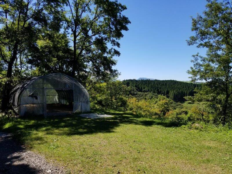 吉原ごんべえ村キャンプ場 全天候型ドームサイト7番サイト