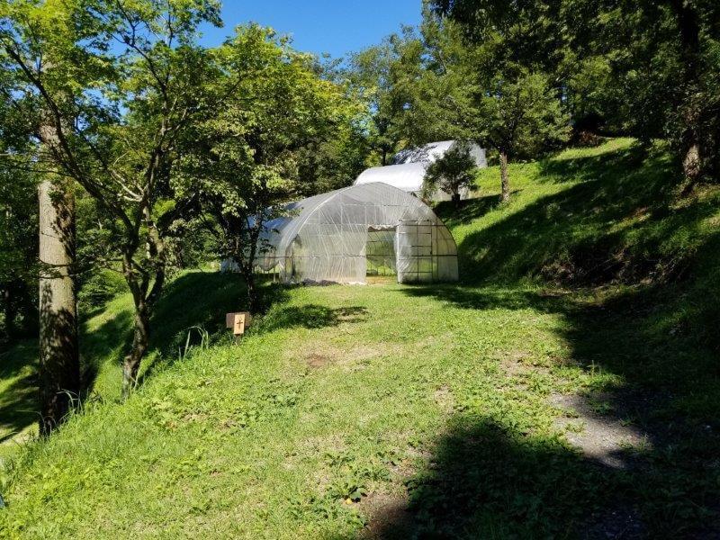 吉原ごんべえ村キャンプ場 全天候型ドームサイト10番サイト