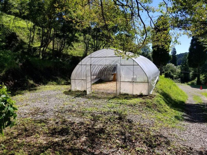 吉原ごんべえ村キャンプ場 全天候型ドームサイト12番サイト