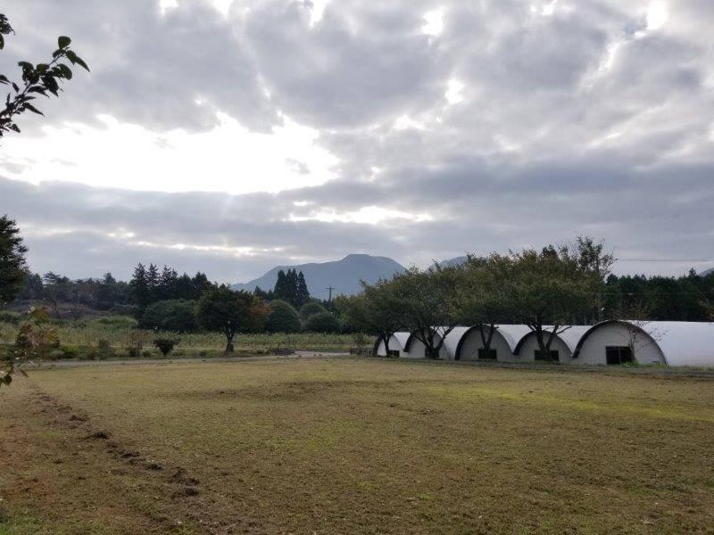 熊谷牧場・雛戸 ブルーベリー・キャンプガーデンのテントサイト