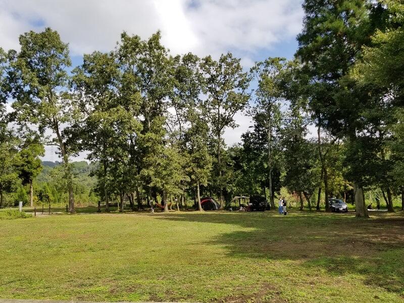 キャンプ&農園 玖珠の杜 木漏れ日エリア