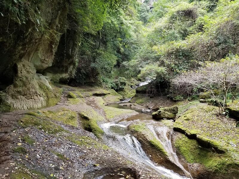 大分県宇佐市安心院町 東椎屋の滝までの道