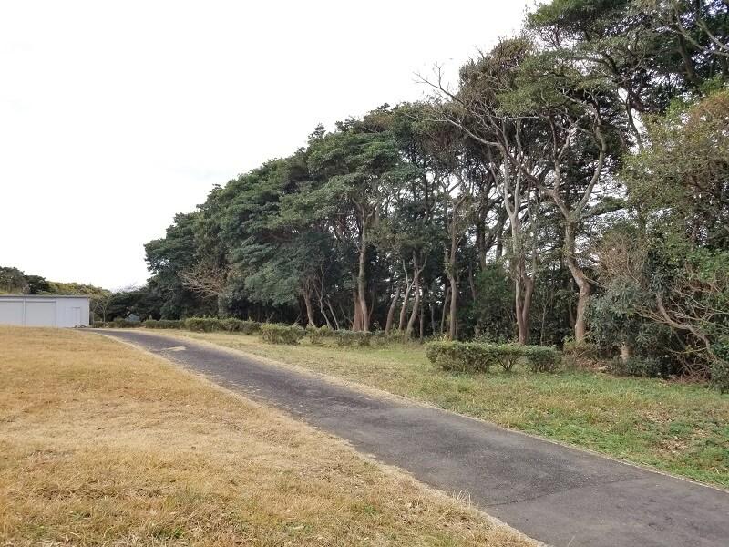 中瀬草原キャンプ場 オートサイト