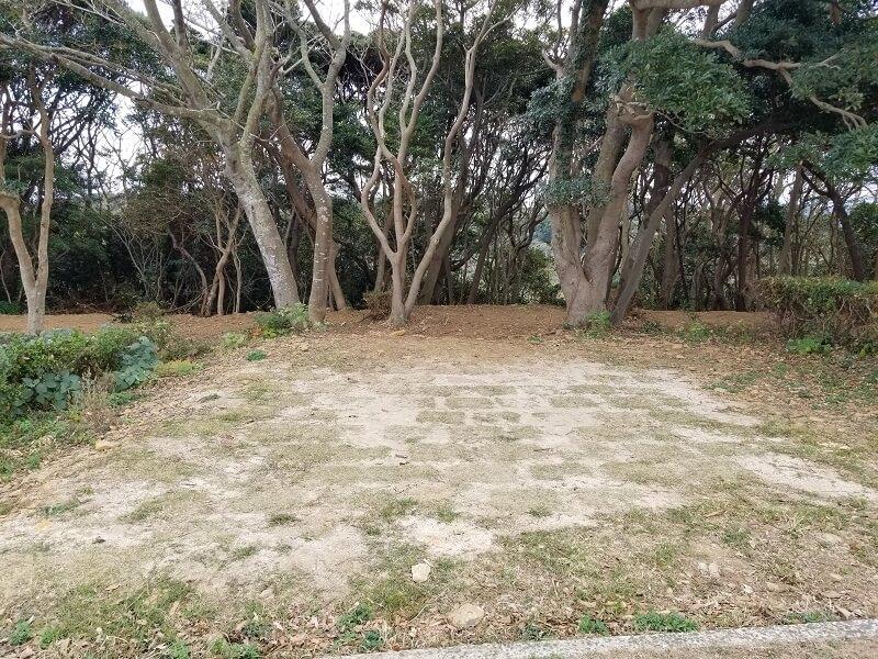 中瀬草原キャンプ場 ハンモック泊が楽しめる林間サイト