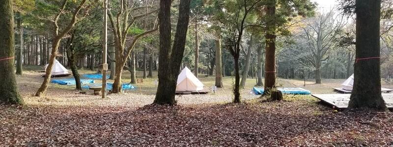 吉無田高原 緑の村キャンプ場 Cサイト:森のテントエリア