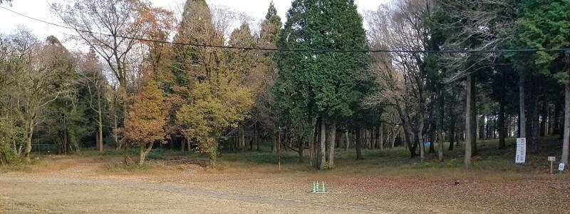 吉無田高原 緑の村キャンプ場 Dサイト:フリーキャンプエリア