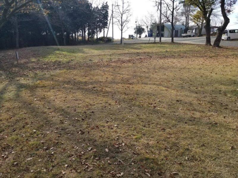 吉無田高原 緑の村キャンプ場 Bサイト:どんぐりの丘エリア