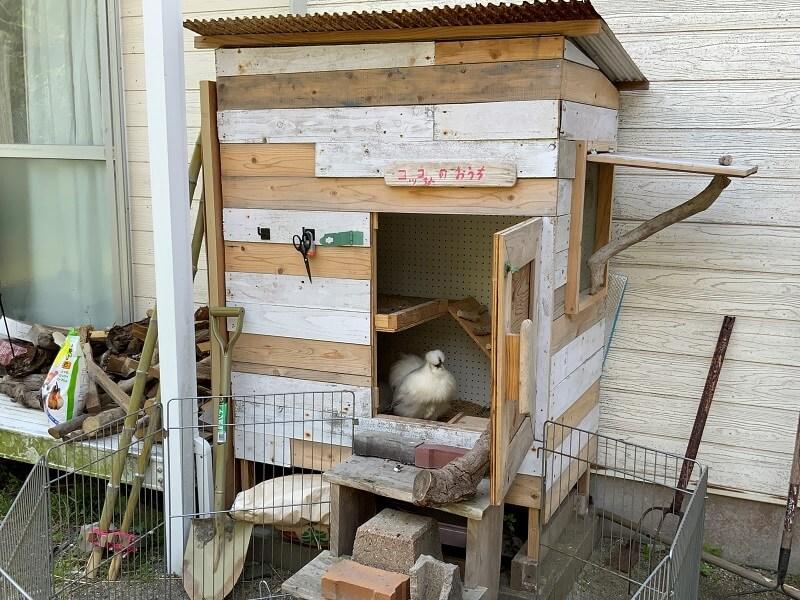 【糸島ピクニックビレッジオートキャンプ場】コッコさんのお家