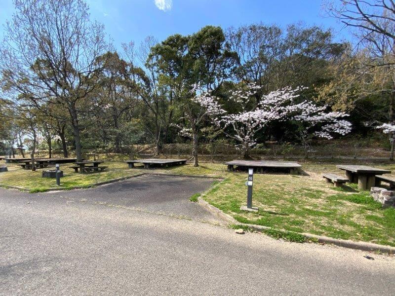 【大崎自然公園キャンプ場】オートサイト 15・16番サイト
