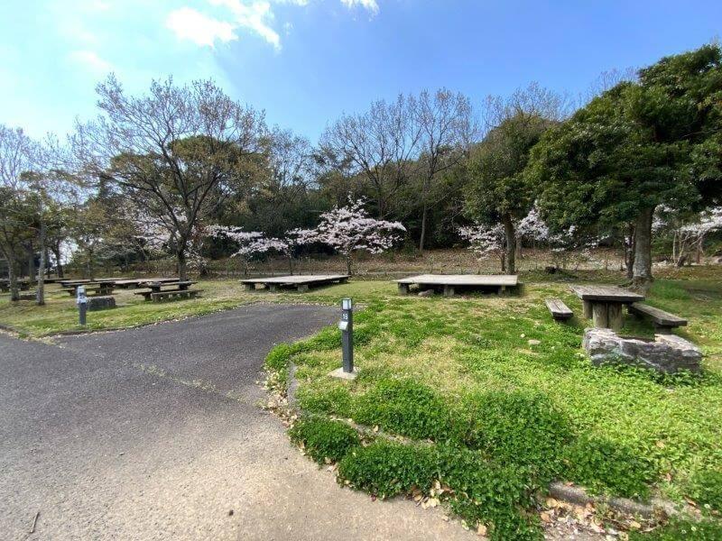 【大崎自然公園キャンプ場】オートサイト 17・18番サイト