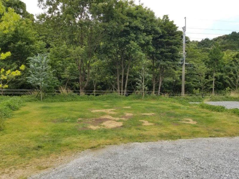 NORTH VALLEY(ノースバレー)キャンプサイト 芝生サイト8番