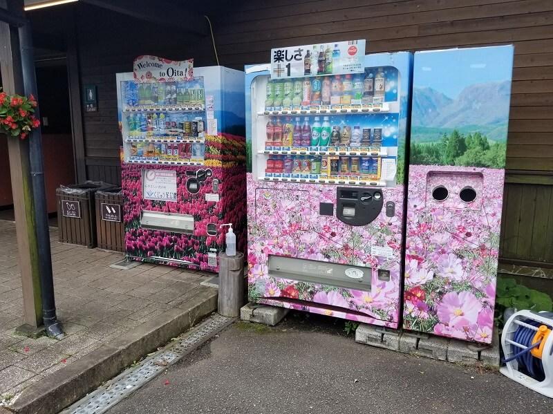 くじゅう花公園 オートキャンプ場 飲料の自動販売機